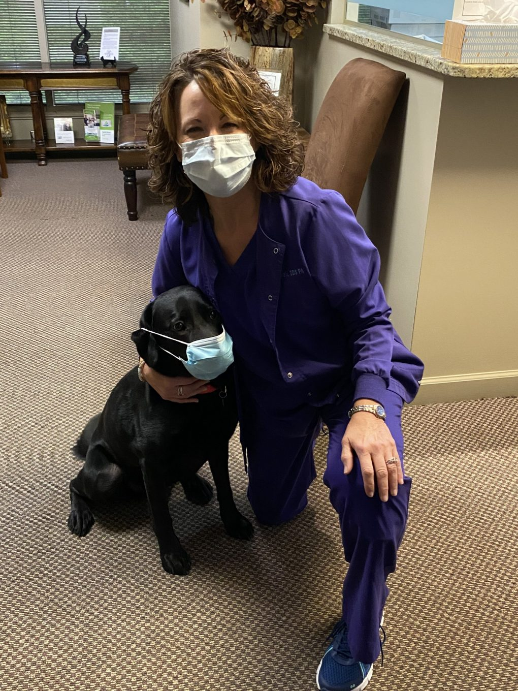The office therapy Labrador retriever and a business team member are wearing face masks.